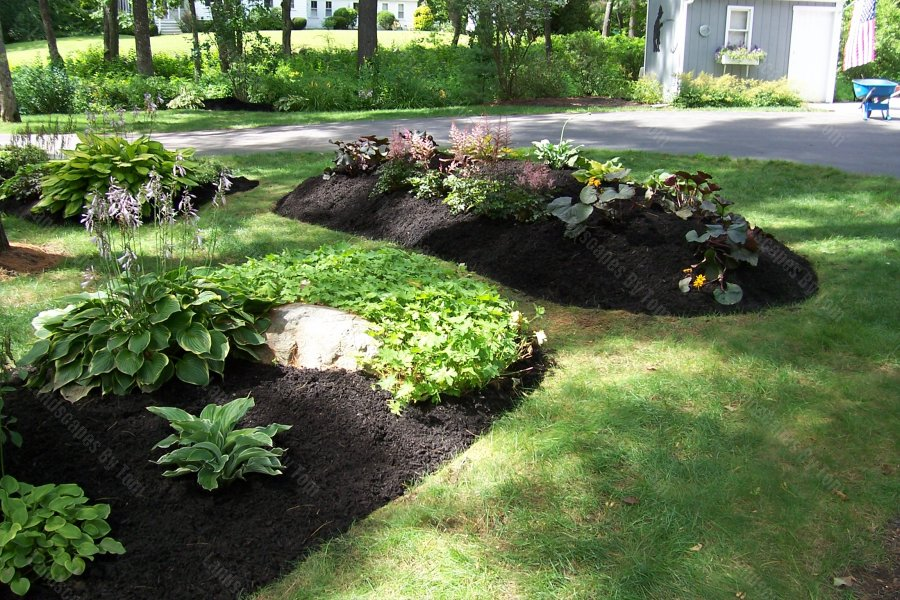 Planting_bed_islands_are_Shade_Gardens-min