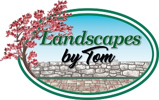 Landscapes by Tom